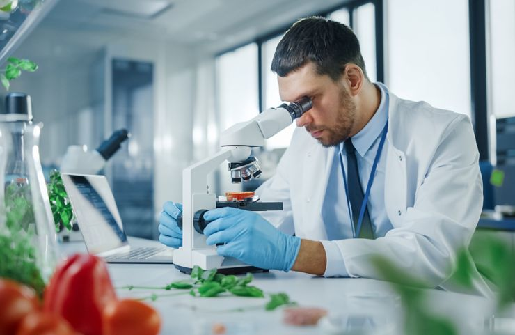 Handsome Male Scientist in Safety Glasses Analyzing a Lab-Grown Tomato Through an Advanced Microscope. Microbiologist Working on Molecule Samples in Modern Laboratory with Technological Equipment.; Shutterstock ID 1920339581; purchase_order: Blog Post; job: Blog Post